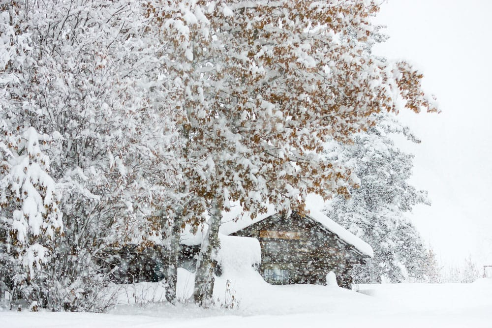 Historic log cabin in heavy falling snow